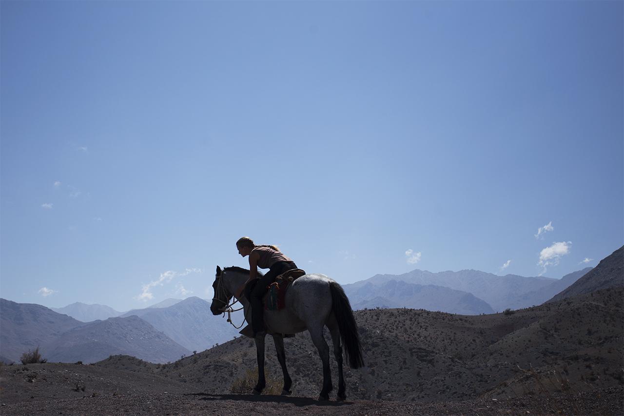 16 horse-ride